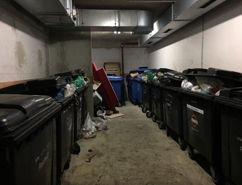 Das Laimer Jugendzentrum: Müllraum im Anwohnerpark nähe Hirschgarten