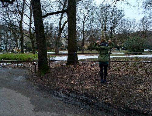 PSG Schulstamm München Au: Nußbaumpark